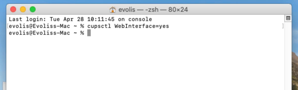 Badgy web cups interface terminal